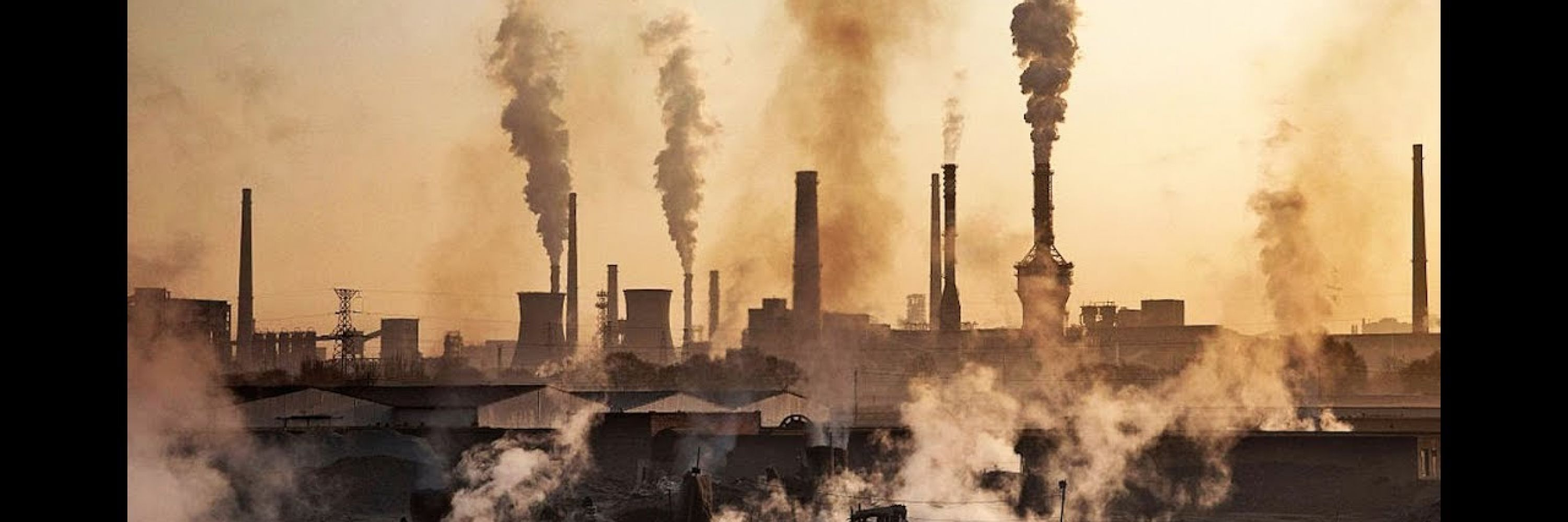 What Climate Collapse Asks of Us - Part I