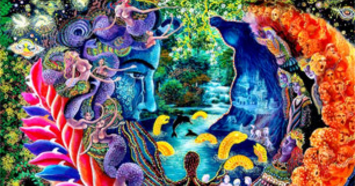 Why I Quit Ayahuasca Shamanism After 11 Years And 1 000