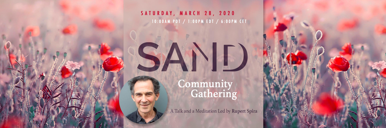 Online Community Gathering  2