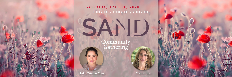 Online Community Gathering 3