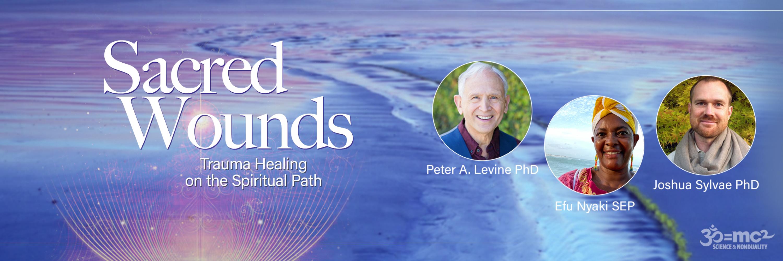 Sacred Wounds<br><small>Trauma Healing on the Spiritual Path</small>